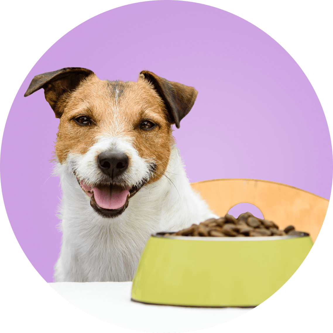 ruff life only sells pet food made with real ingredients