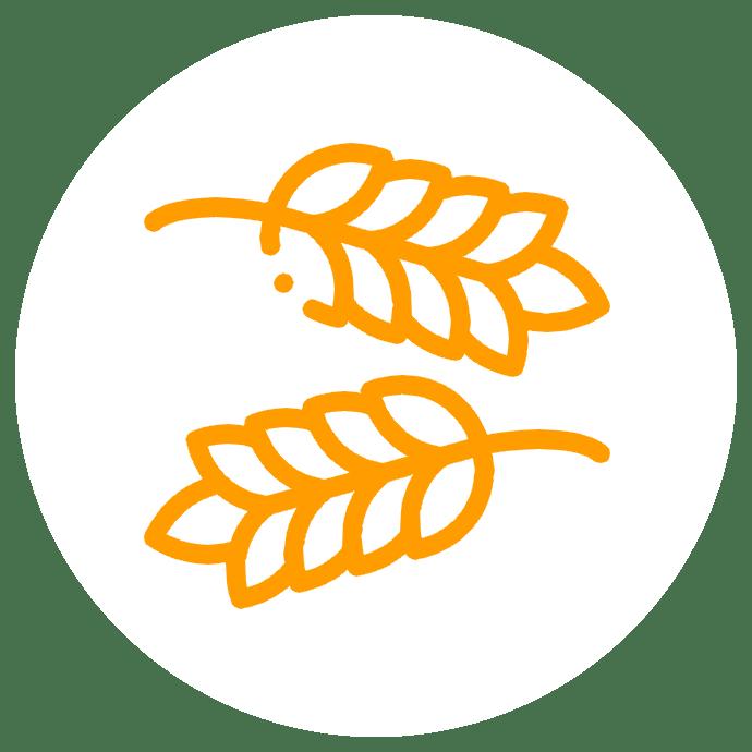 no_wheat_or_corn2